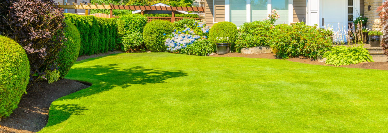 7 Tips for a Greener, Healthier Lawn