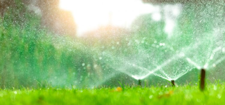 Automatic lawn sprinkler watering green grass
